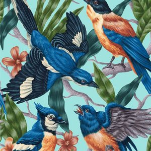 Four Bird Fight