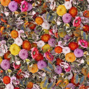 Chrysanthemums 22