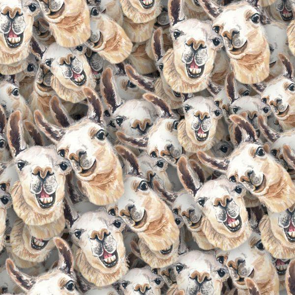 Laughing Llamas