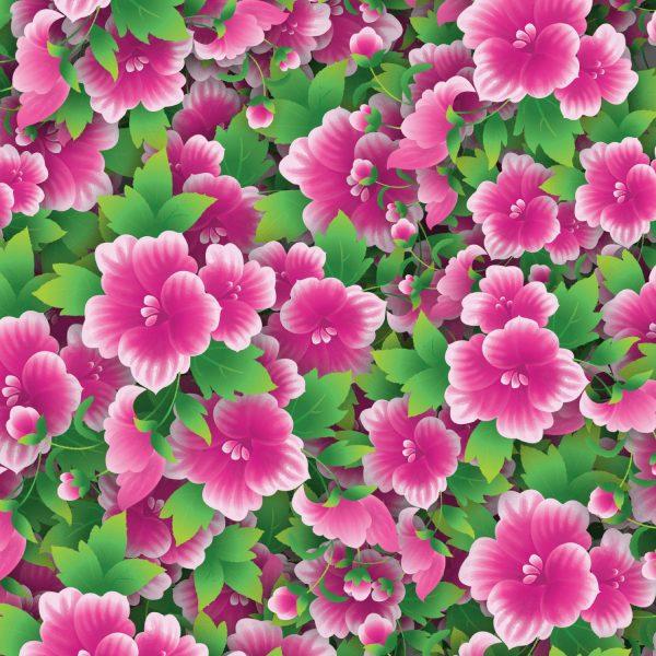 Flowers 43