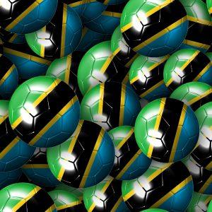 Tanzania Soccer Balls