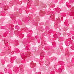 Flower Petals 24