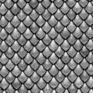 Engraved Dragon Scales