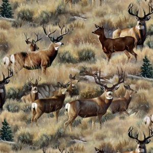 Outstanding Deer Painting