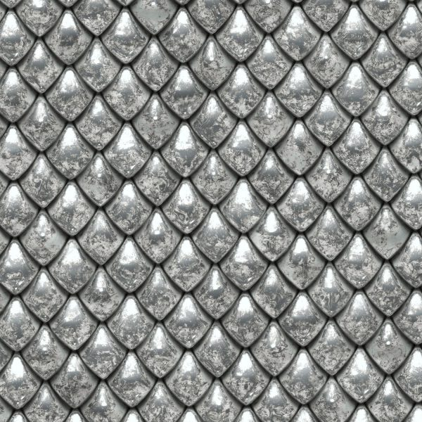 Silver Dragon Scales