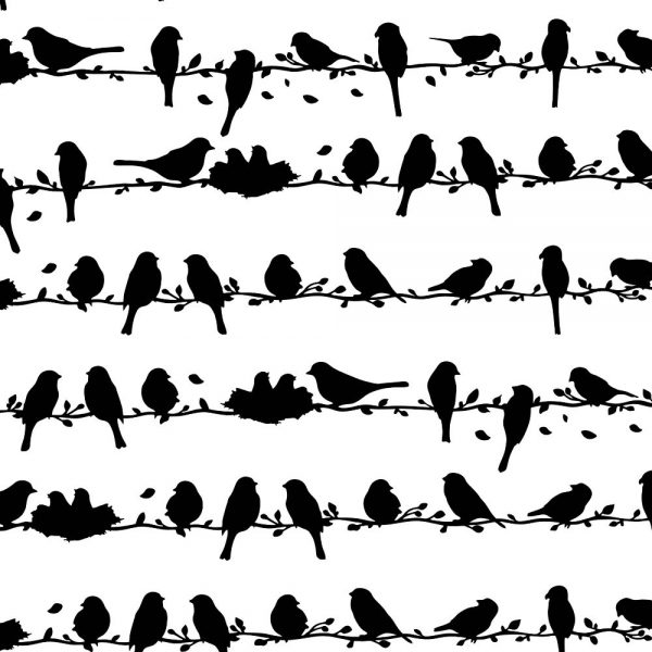 Birds on a Wire 22
