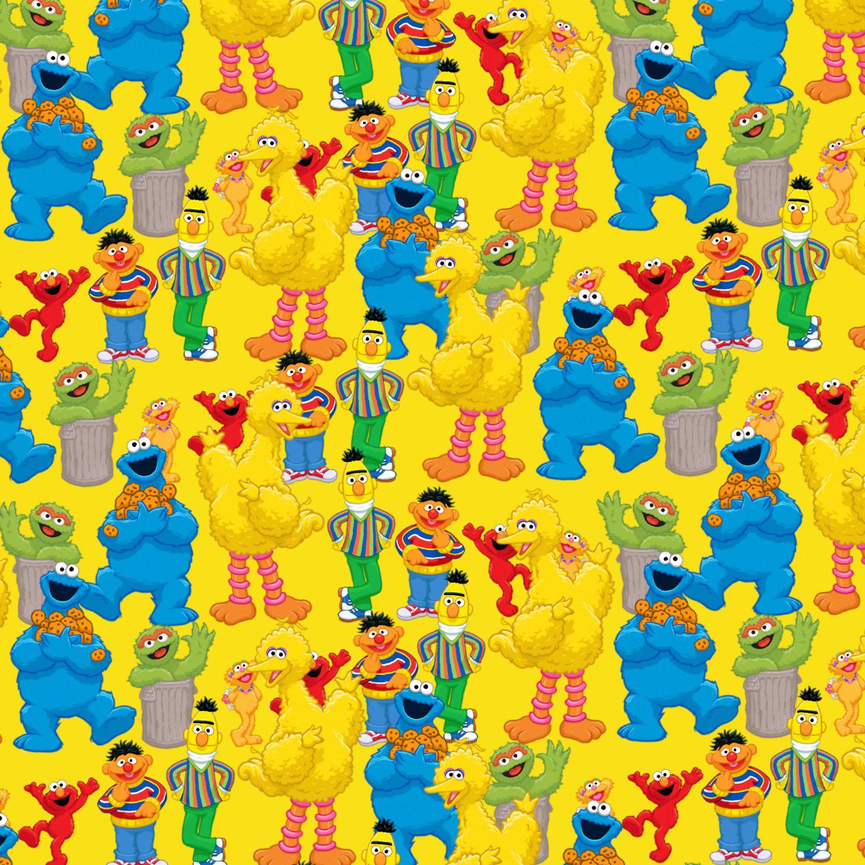 Sesame Street 25