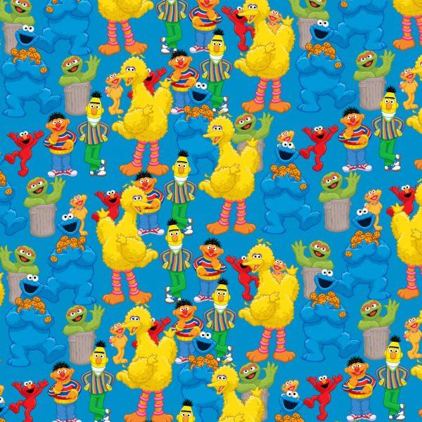 Sesame Street 26