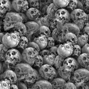 Basket of Skulls 22
