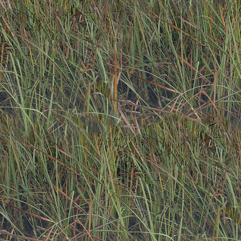 Florida Everglades 22 Camouflage