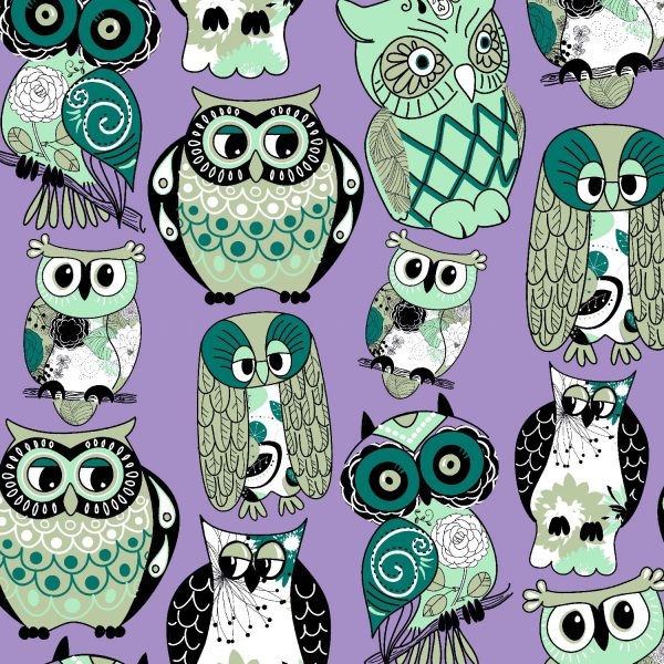 Owl Collector 22