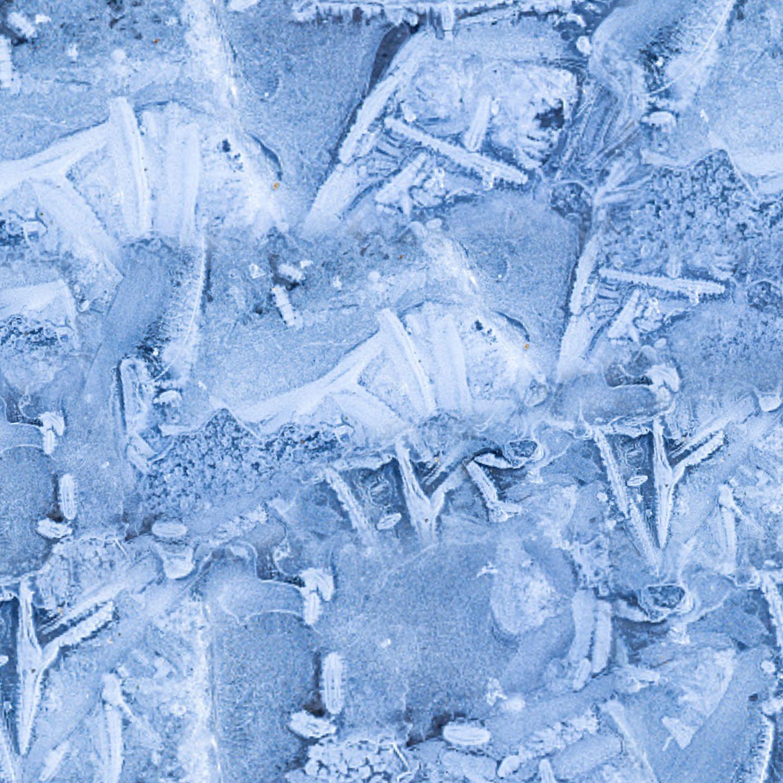 Icy Ground 22
