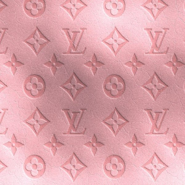 Louis Vuitton Pink Embossed Leather 22