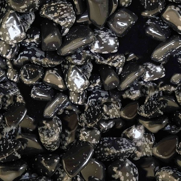Obsidian 23
