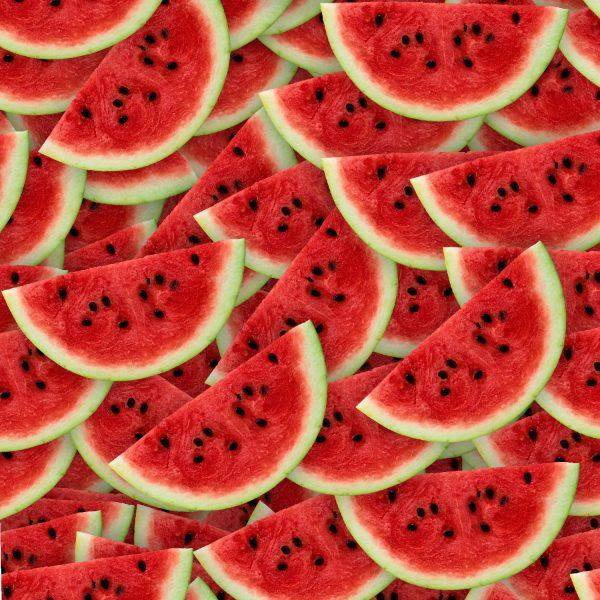 Watermelon Slices 22