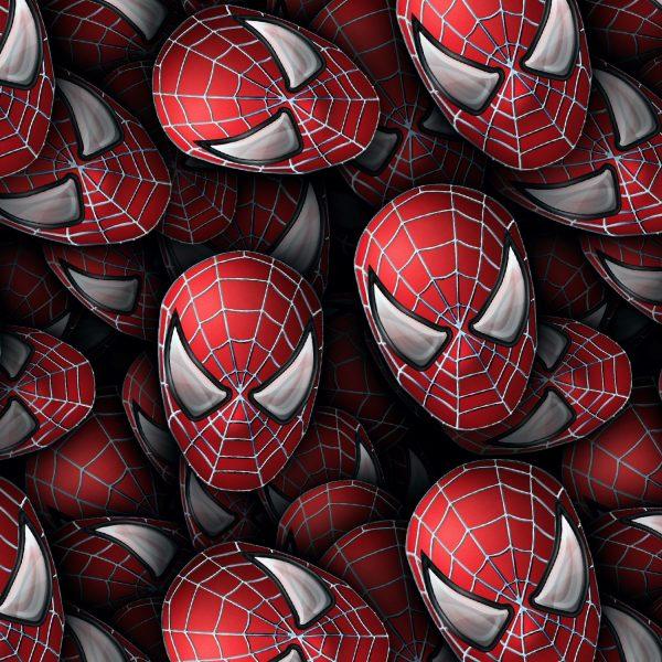 Spiderman 26