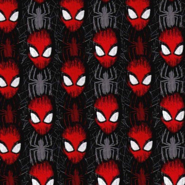 Spiderman 27