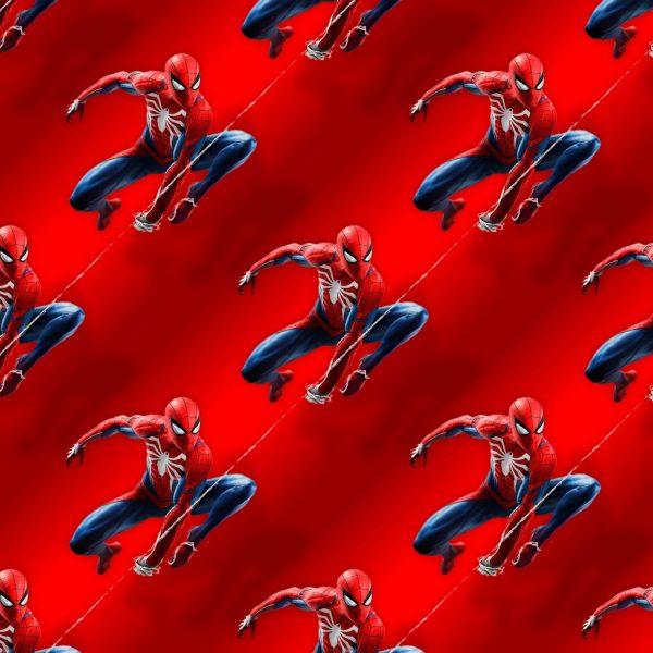 Spiderman on the Web 22