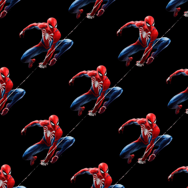Spiderman on the Web 23