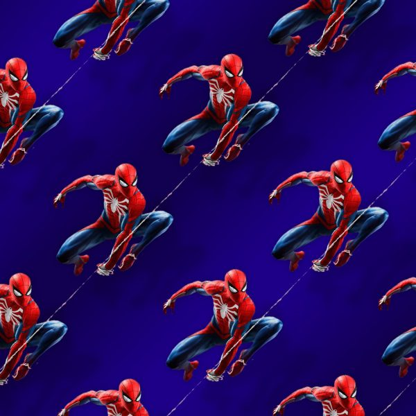Spiderman on the Web 24