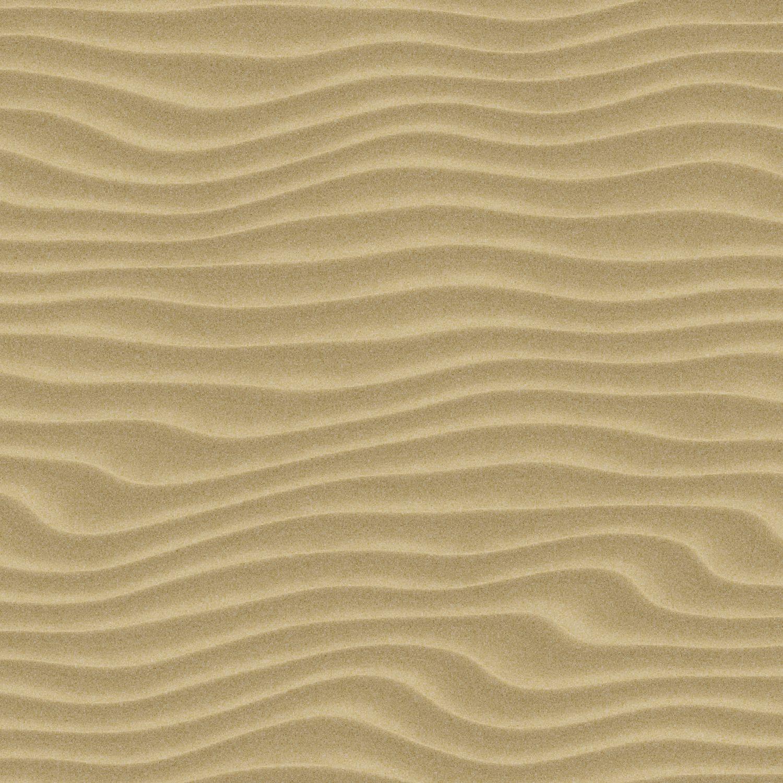 Wind Dunes