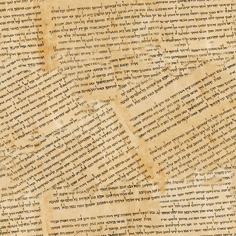 Dead Sea Scrolls 23