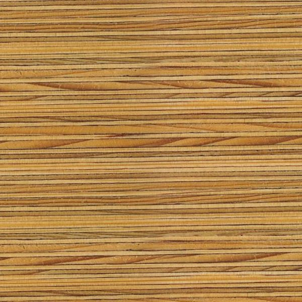 Plywood Endgrain