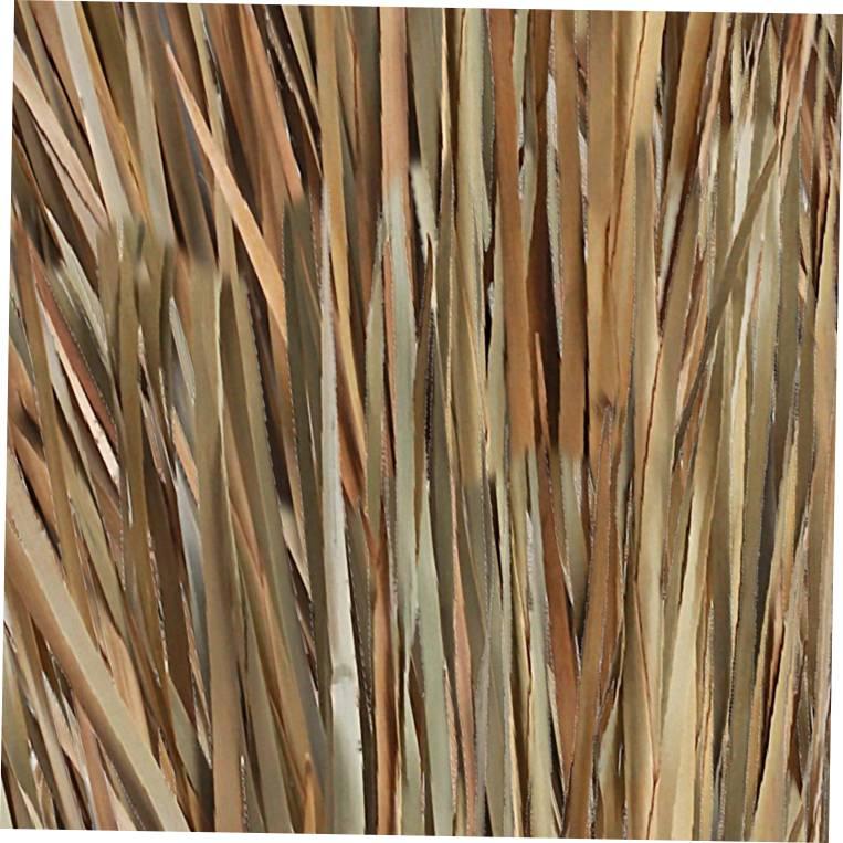 Natural Reeds 22