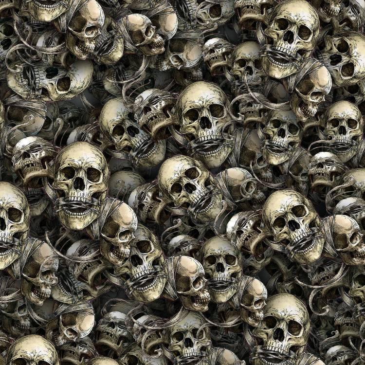 No Evil Skulls 24