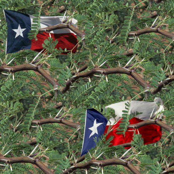 Texas Mesquite 22 Camouflage