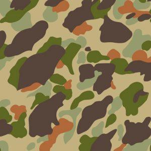 WWII Frogskin Camo 22 thumb