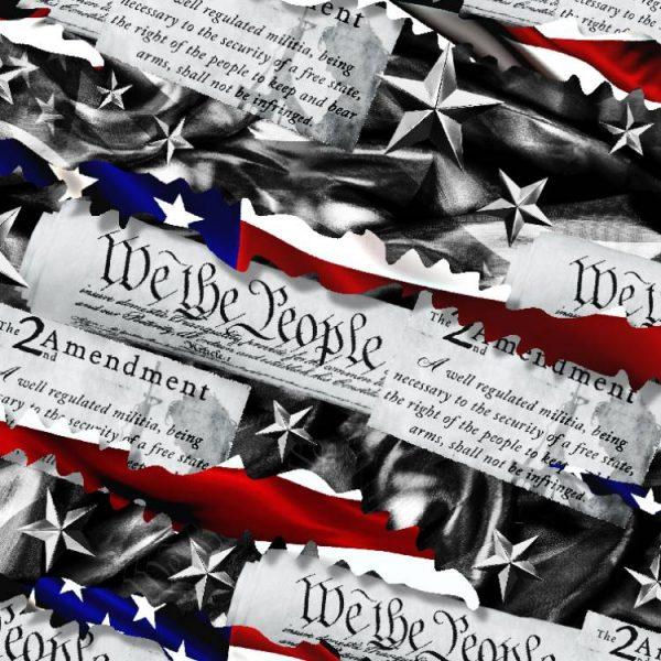 Torn-Second-Amendment-22-thumb