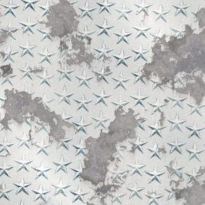 Corroded-Star-Plate-Aluminum-thumb