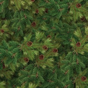 Evergreen-Fir-with-Cones-thumb