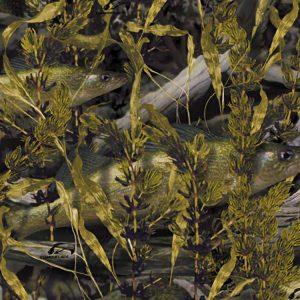Fishoflage Walleye Camouflage
