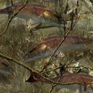 Fishoflage Redfish Camouflage