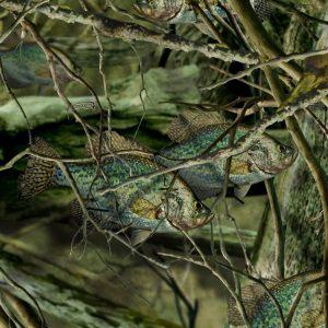 Fishoflage-Crappie-Camo-thumb