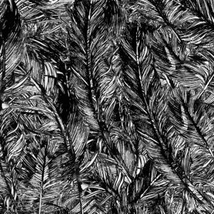 Feathers-28-thumb