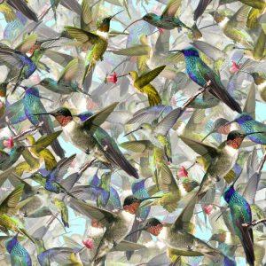 Hummingbirds-23-thumb