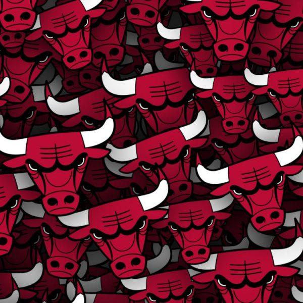 Chicago-Bulls-22-thumb