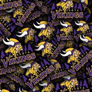 Minnesota-Vikings-22-thumb