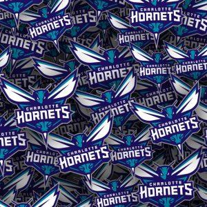 Charlotte-Hornets-22-thumb