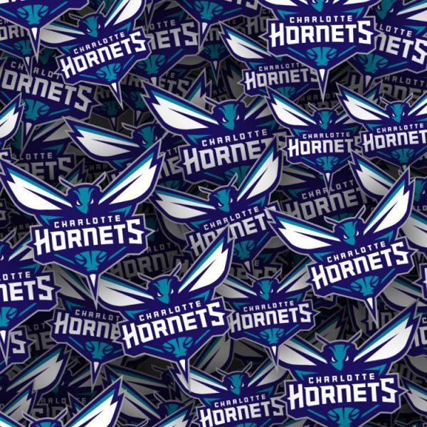 Charlotte Hornets 22 thumb