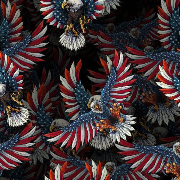 American-Flag-Eagle-22-thumb