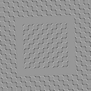 Illusion 334