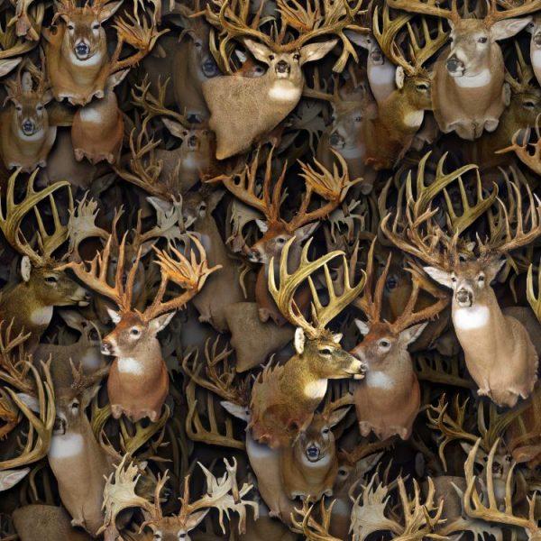 Buck-Heads-thumb