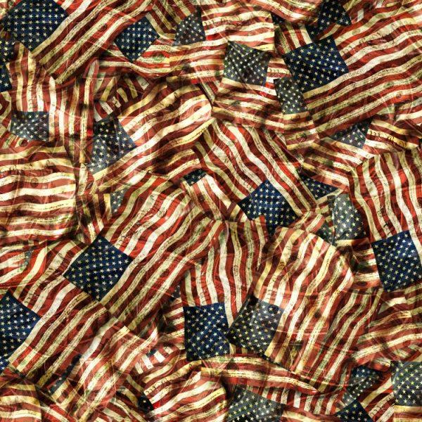Constitutional Flags 24