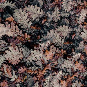 Fall Leaf Camo 24 thumb