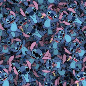 Stitch 24