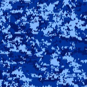 Winnipeg Blue Bombers Camouflage